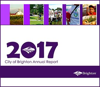 COB_AnnualReport2017_Thumb