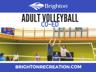 2020 Adult Co-Ed Volleyball Flyer NewsFlash